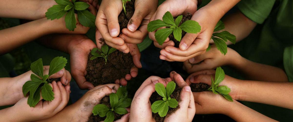 Teach kids environmental awareness