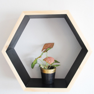 Hexagon Wall Shelf - Black