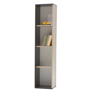 New Land Bookcase