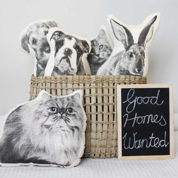 Pet Pillows by Menagerie