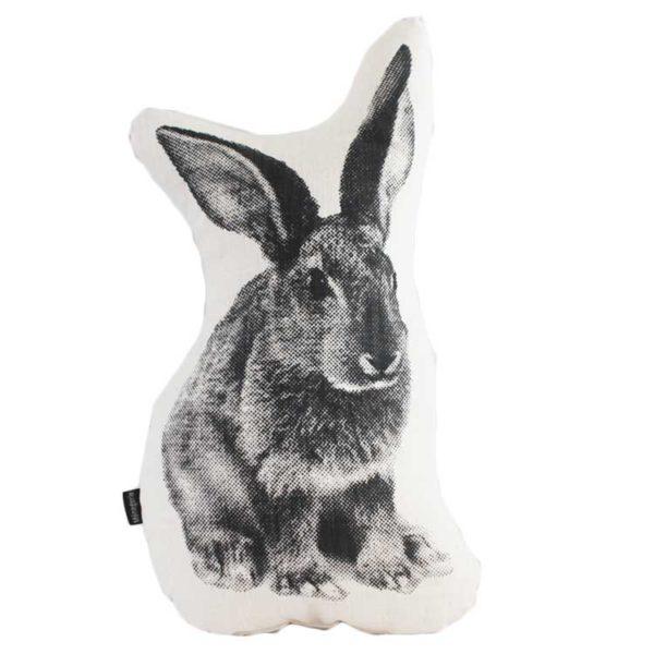 Peter Rabbit Scatter