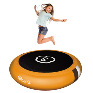 trampoline-with-pool4