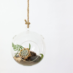 Round Hanging Vase