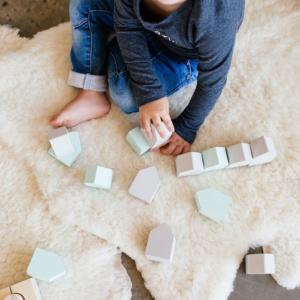 Little Home Play Blocks