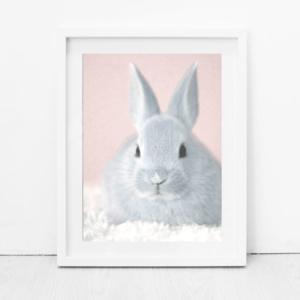 Bunni Pink Bunny Art Print