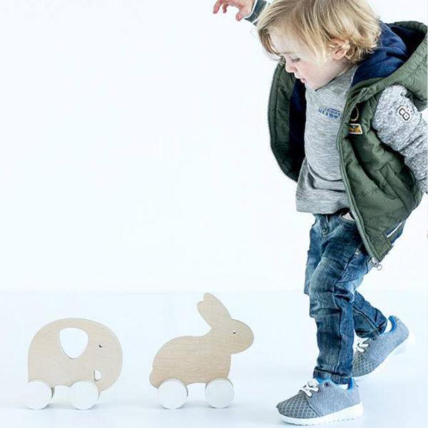 Simply Child Push Toys