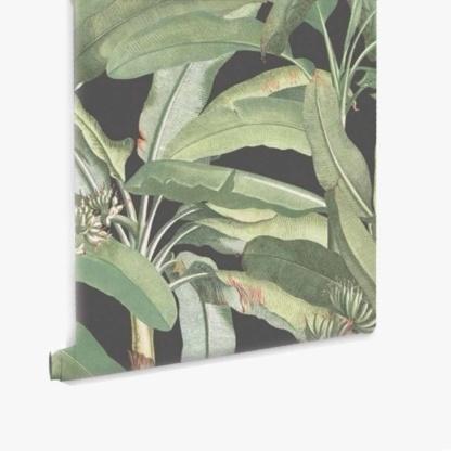 Tropical Banana Plant Black Wallpaper