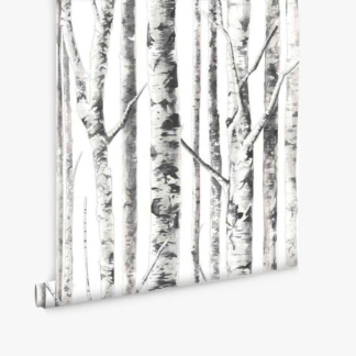 Birch Trees Wallpaper - White