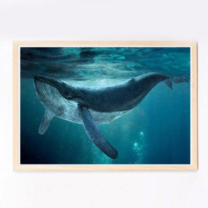 Bunni Dreamy Whale Art Print